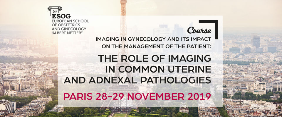 European Society of Gynecology – Professional gynecologists